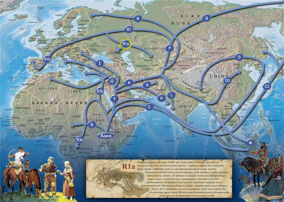 Migration_R1a.jpg